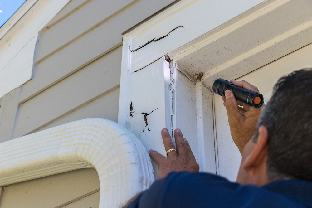 Free Pest Control Inspections